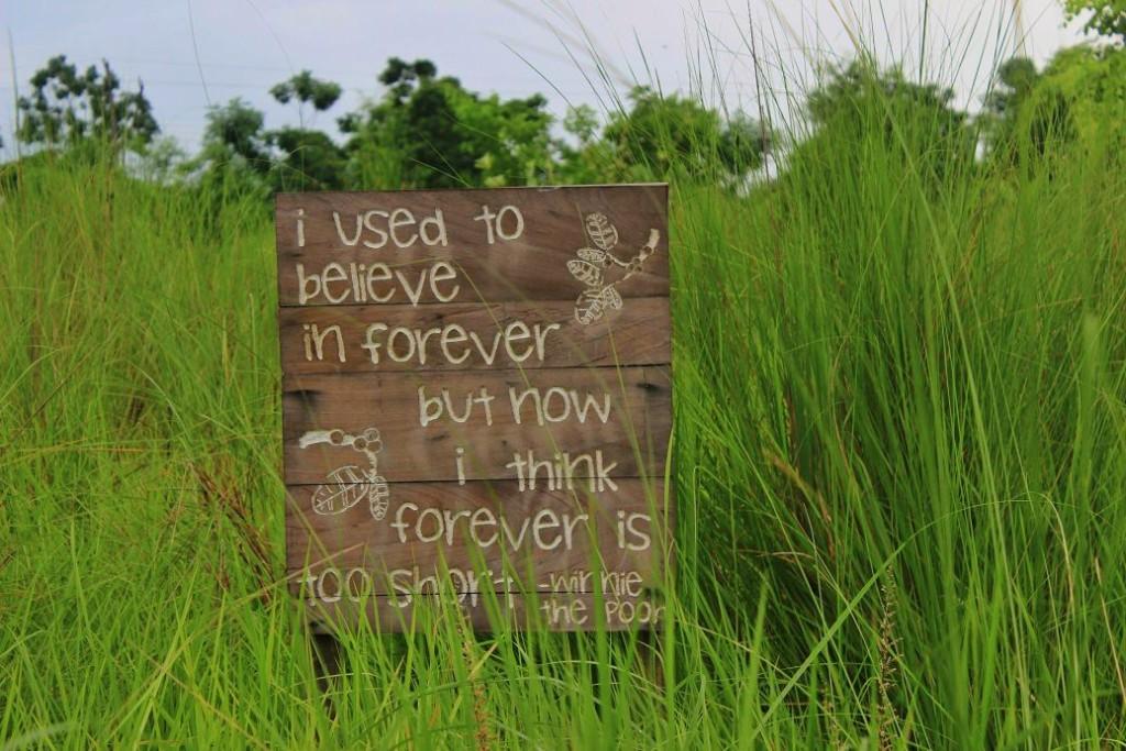 Signs around BJL