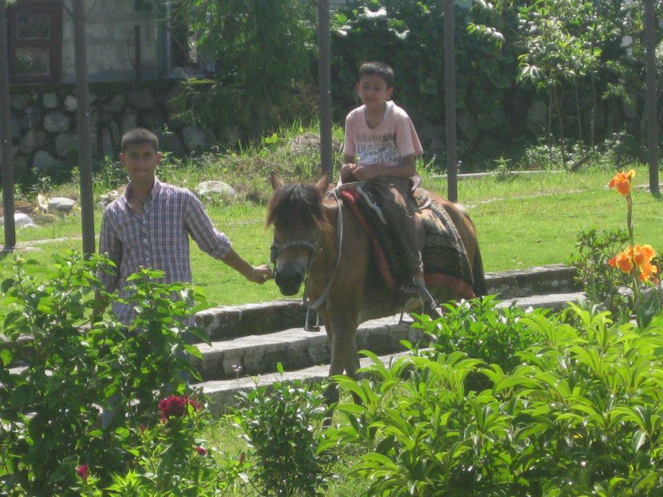 ChaChaWhee Fun Park Pony Ride