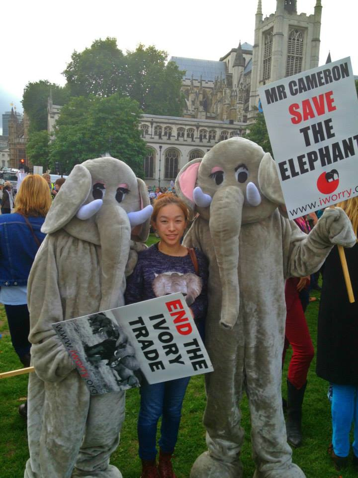 Elephant Protest Small 4