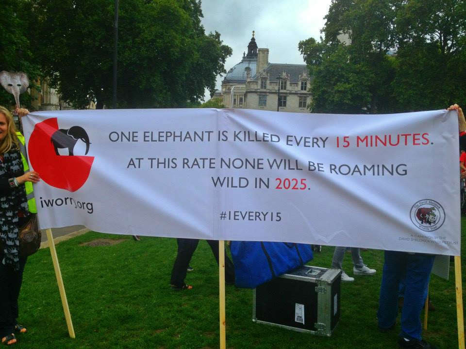Elephant Protest Small