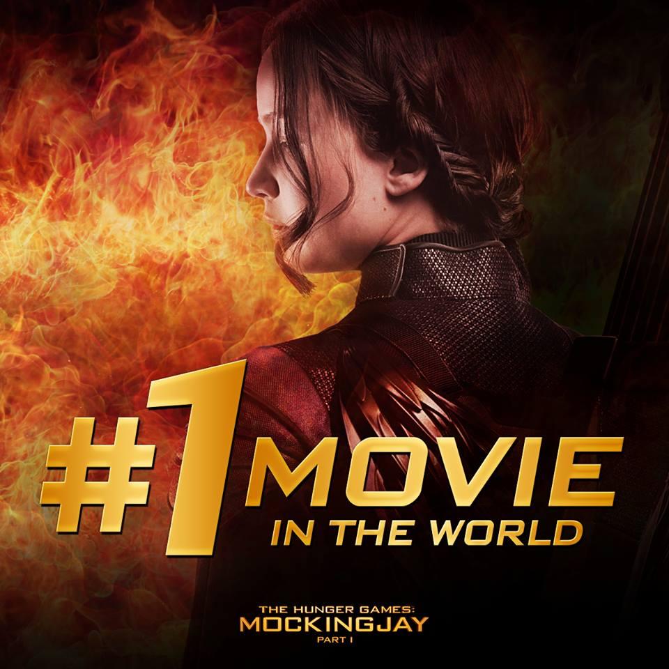 Hunger-Games-Mockingjay-Nepal