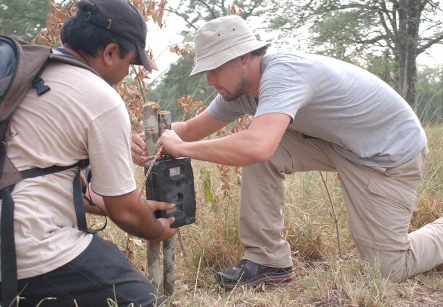 Leonardo Dicaprio fixes a camera trap with WWF staff Pradeep Khanal at Nepal's Bardia National Park. - WWF
