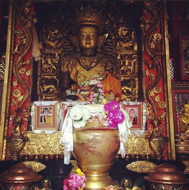 Praying to Buddha this morning hoping @RaginiMMS_2 keeps going strong!