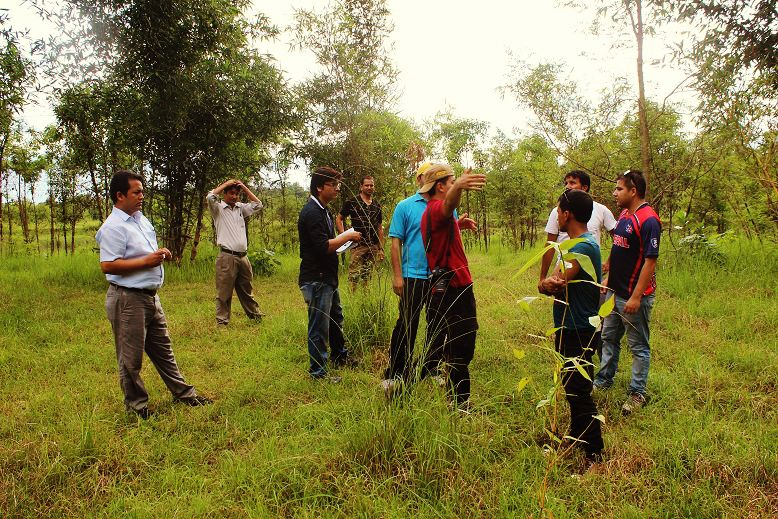 Being briefed about the type of trees and plants in the area.